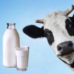 milk price