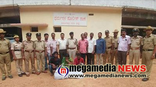 3 Tamiliens arrested with 20 kgs of ganja