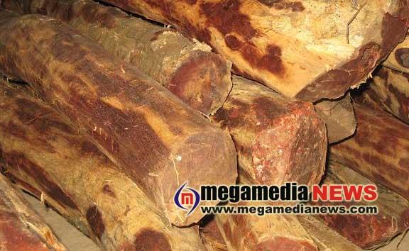 Sandalwood smuggling: Three arrested in Puttur