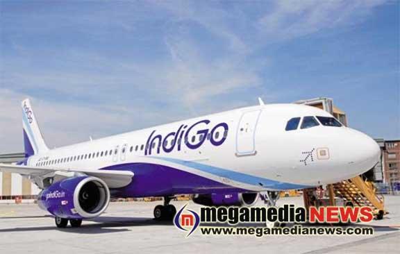 indigo-airoplane