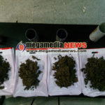 Customs officials sized Ganja worth 5 lakhs at Mangalore Intl. Airport