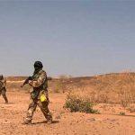 Niger-army