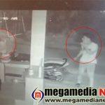 kollya-thieves